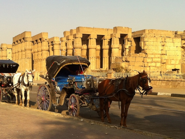 Cultural City Tour in Luxor by Horse-Drawn Carriage