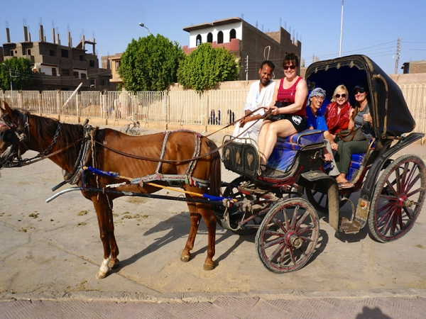 Cultural City Tour in Aswan by Horse-Drawn Carriage